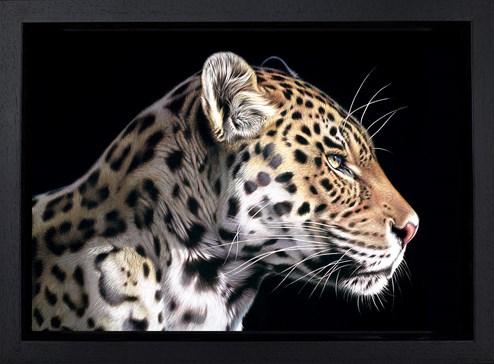 The Wild Side I by Darryn Eggleton - Framed Box Canvas